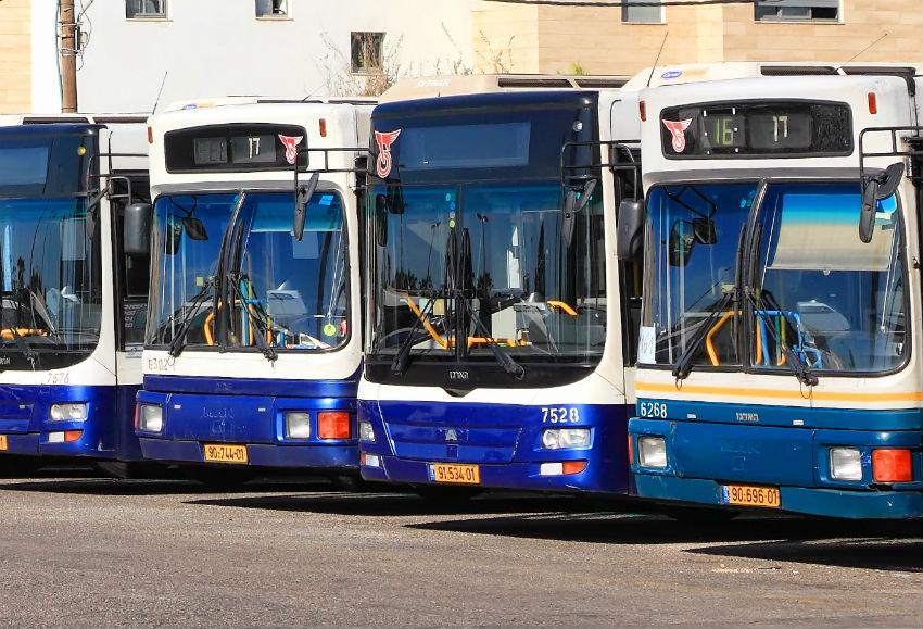 אוטובוס אוטובוסים תחבורה ציבורית