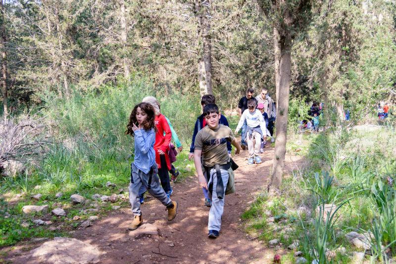 ילדים תלמידים טיול שנתי טבע