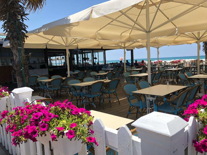 המסעדה של חוף תאיו - להזמין אלכוהול במסעדה עצמה מותר (צילום: מורן בן זכאי)