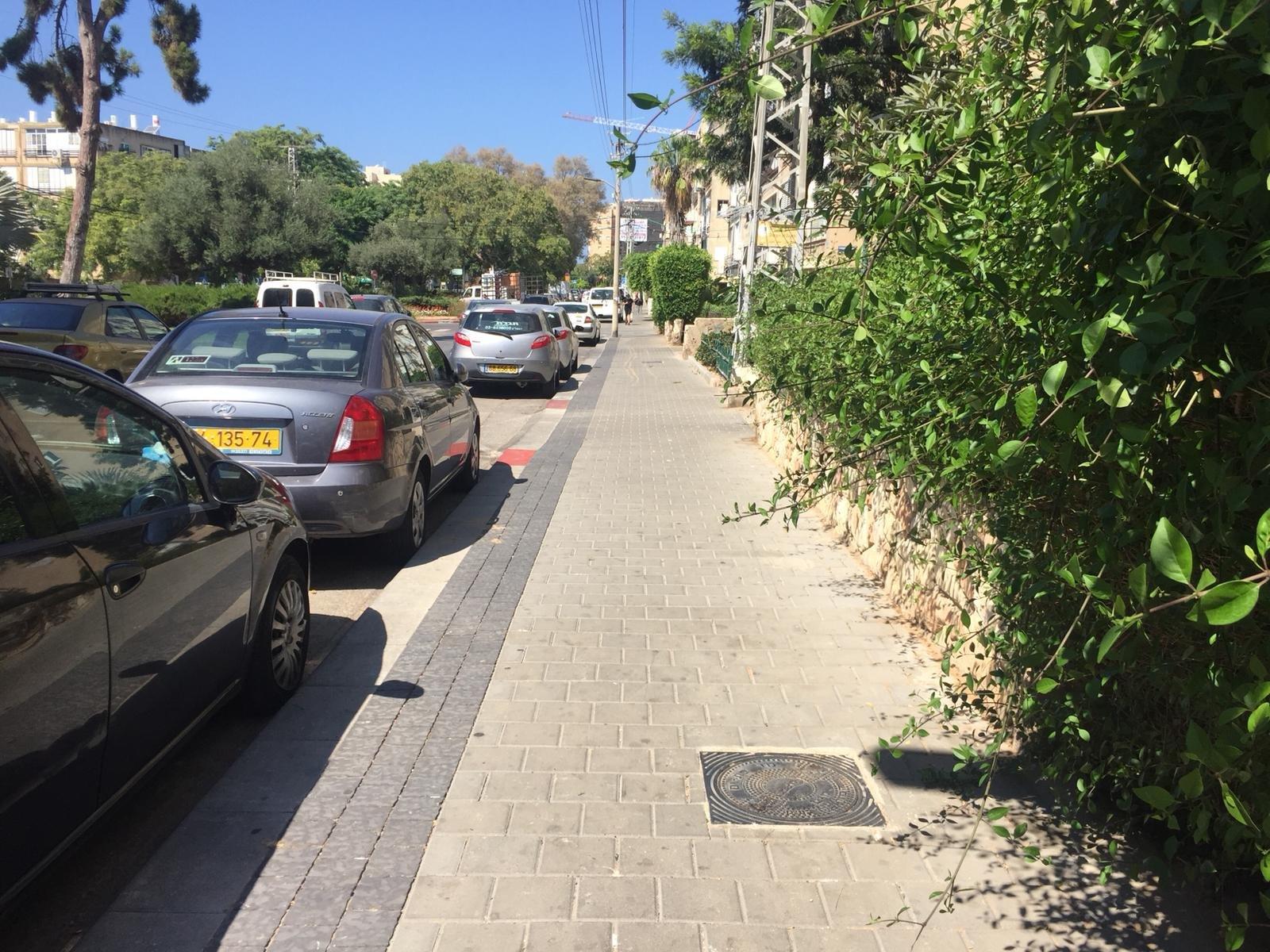 מדרכות חדשות ברחוב דניאל (צילום: אור ויטא)
