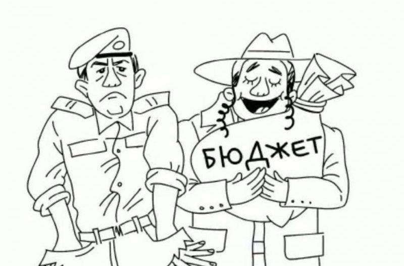 קריקטורה שהעלתה חברת המועצה אירנה גנין